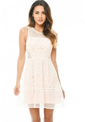 Women's Cream/Pink Skater Dress with Mesh and Lace Detail