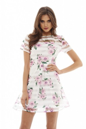 Women's 	Floral Striped Skater    Cream Dress