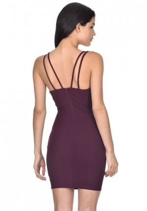 Women's Plum Mesh Bodycon Dress