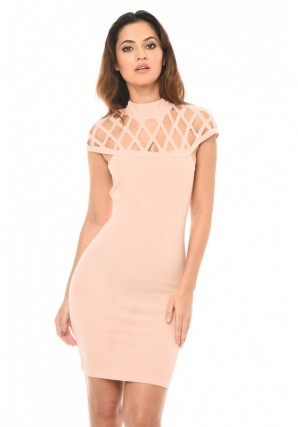 Women's Pink Mini Bodycon Dress with Cage Detail