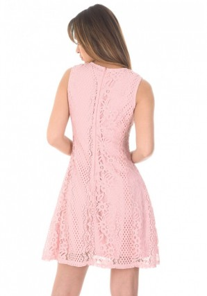 Women's Pink Lace Detail Skater Dress