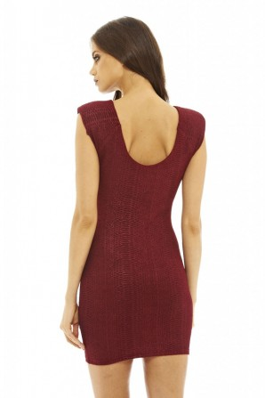 Women's Textured Mini  Wine Dress