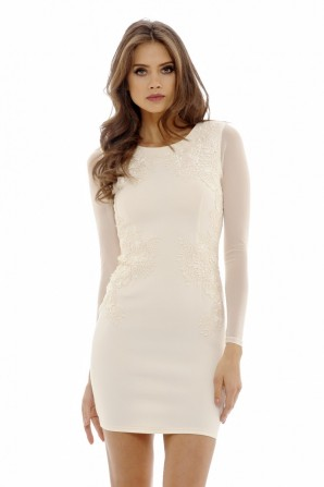 Women's Lace Feature Bodycon  Nude Dress