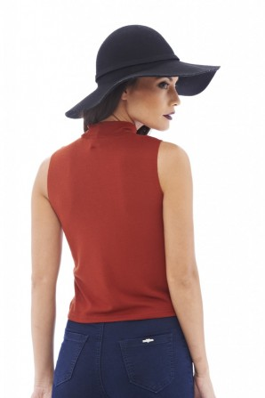 Women's Polo Neck Crop Rust Top