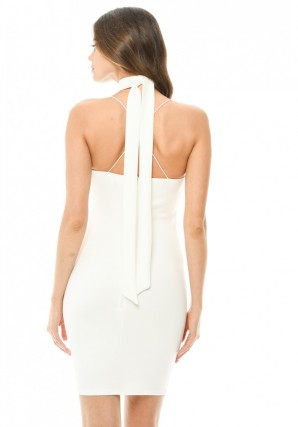 Women's Cream Embroidered Bodycon Dress