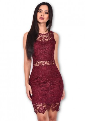Women's Plum Crochet Embroidered Mini Dress