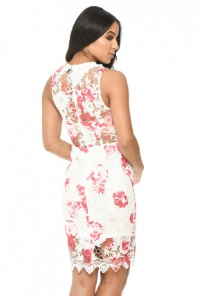 Women's Cream and Pink Floral Lace Bodycon Dress