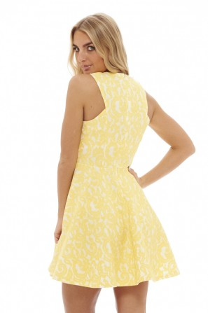 Women's 	Paisley   Lace Skater  Yellow Dress