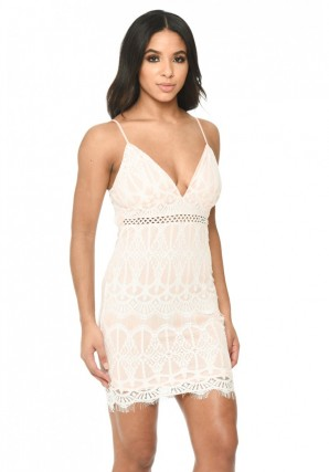 Women's Pink Lace Fitted Mini Dress