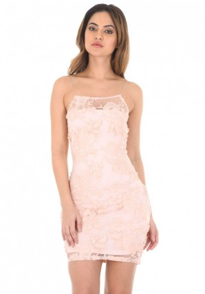 Women's Blush Floral Mesh Embroidered Bodycon Dress