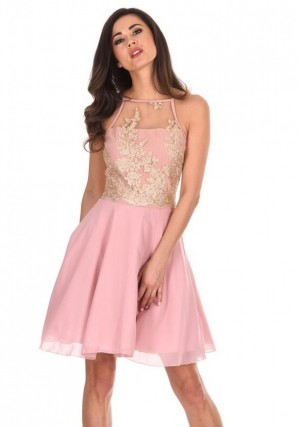 Women's Pink Mesh Gold Embroidered Skater Dress