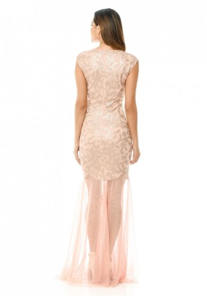 Women's Blush Sequin Bodice Chiffon Maxi Dress